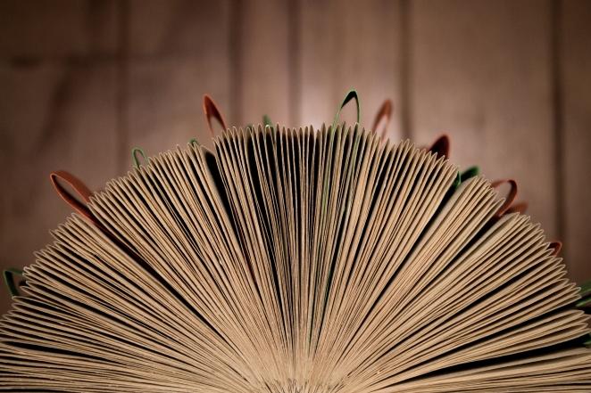 TheGoodBook